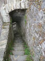 restormel castle, cornwall (9)