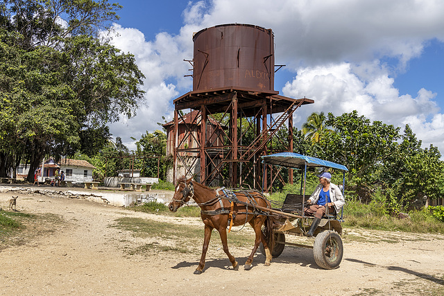 rusty horse with Alexis' tank