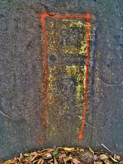 rupestre contemporâneo