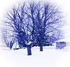 Toujours en hiver !