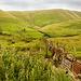 Cumbria,