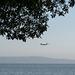 SFO ANA flight / pandemic (# 0569)