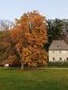 Goethes Hausgarten