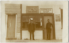 MN1137 DAUPHIN - TOSELAND & SON - BOOTMAKERS