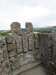 restormel castle, cornwall (15)