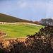Welsh landscape.56jpg