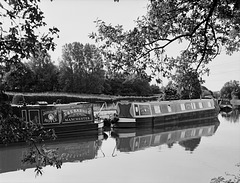 The Macclesfield Canal at Higher Poynton