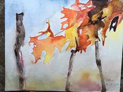 Aquarelle : Quelques feuilles
