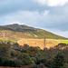 Welsh landscape.98jpg
