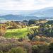 Welsh landscape28