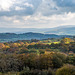 Welsh landscape41