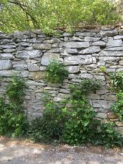 Schloss-Mauer