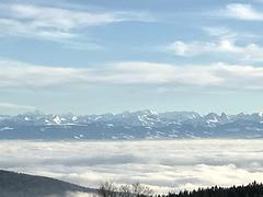 Svisaj Alpoj_7
