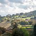Welsh landscape78