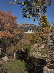 San Lorenzo de El Escorial from the Bosque de La Herrería.