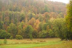 Herbstfarben und Hitzeopfer - HFF!