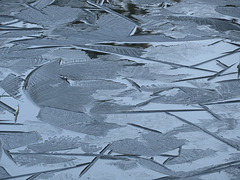 Ice on pond