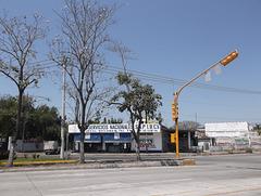 Traffic light / Semáforo