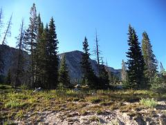 Les splendeurs du Wyoming / Wyoming's splendors