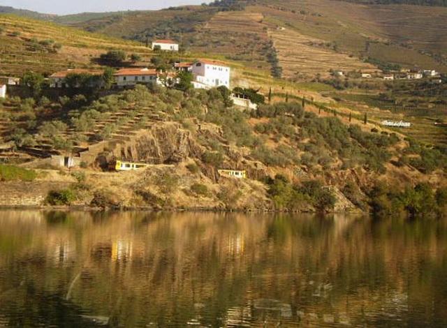 Train passing along Douro riverside.