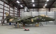 British Aerospace Harrier GR.5 ZD353