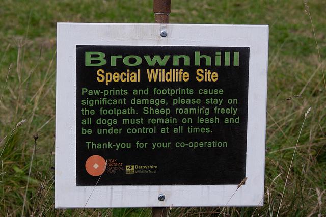 New Wildlife site