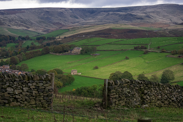 Bleaklow from Brownhill