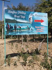 Surfing fishing boat trip