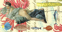 odalisque with fish