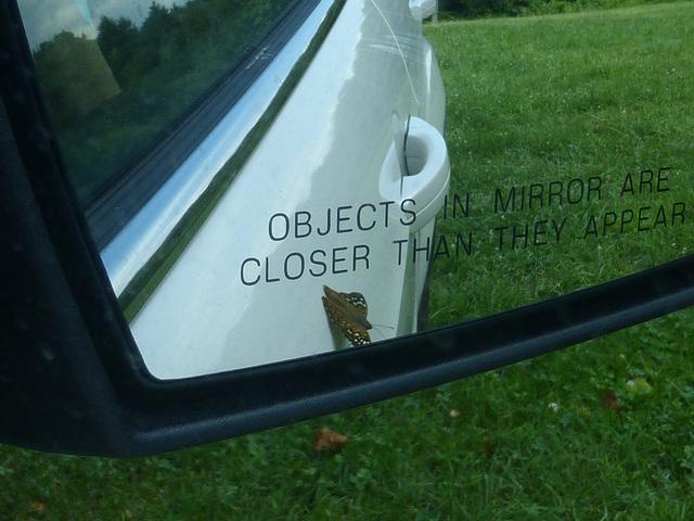 ... in Mirror -2