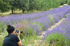 Au paradis des photographes