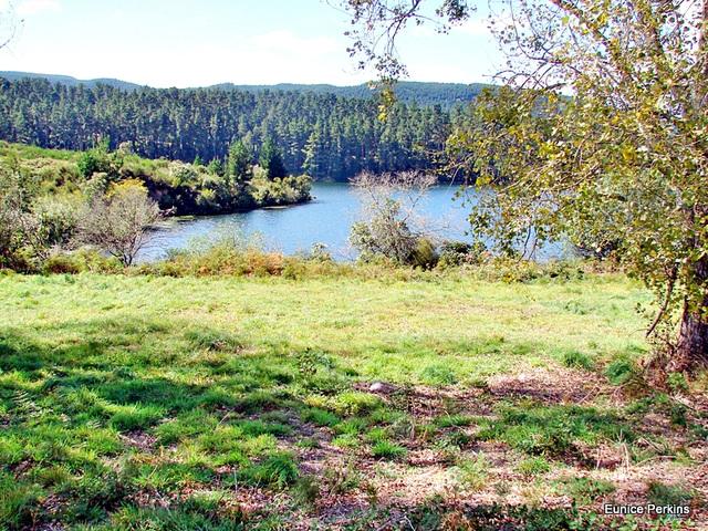 Part of Lake Whakamaru