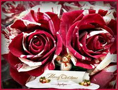 Bonne Fête De Noël à tous et bon réveillon ....!