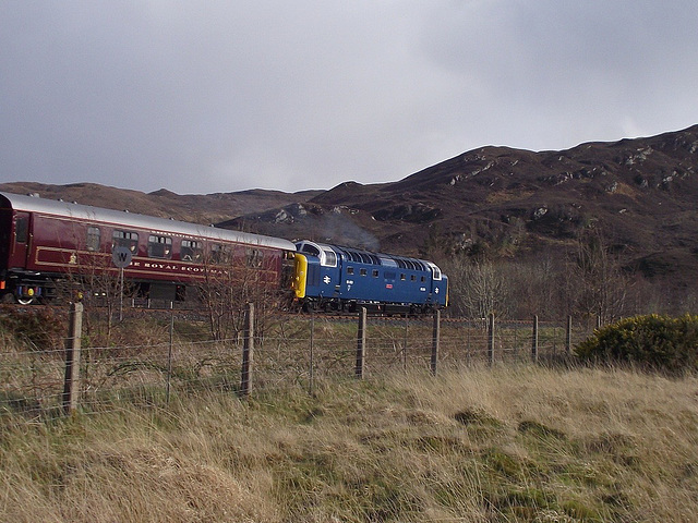 """Royal Scots Grey"" passes Attadale"