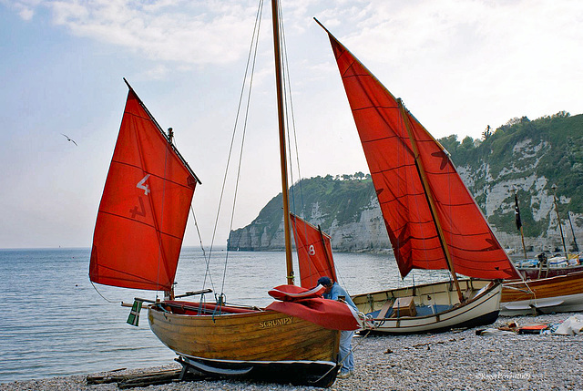 Red Sails.