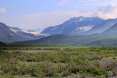 Gulkana Glacier