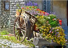 Floral Accomodation : SPC 11/2017 - 3° place - Sauze d'Oulx