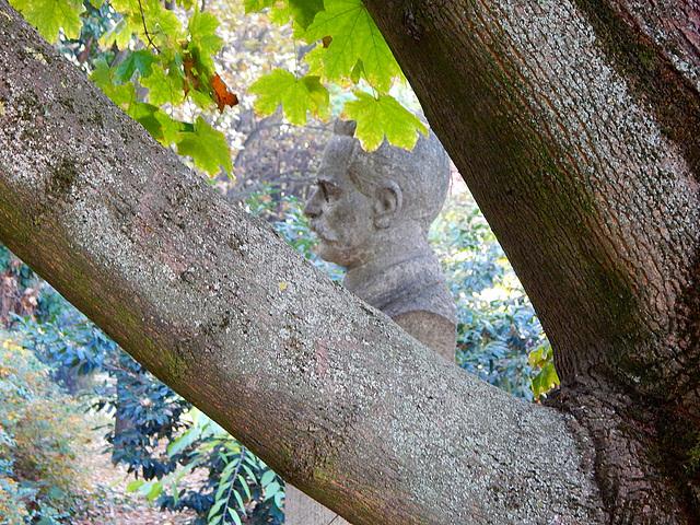 Szarvas, szobor a fa mögött