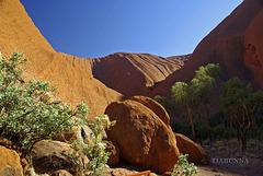 Visiting Uluru