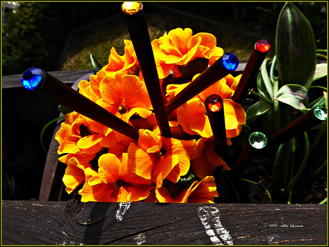 Frühlingsblüten ...  *Stifte* (12/50)