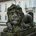 April 17: Lion