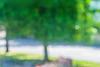 La Visite de Claude Monet dans Notre Rue