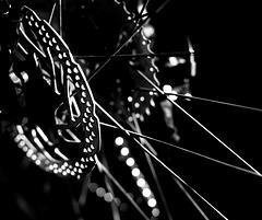 circle & chain