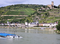 Vallée du Rhin / Rheintal (D) 10 septembre 2010.