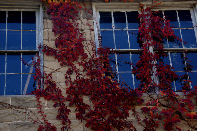 An old building in Autumn
