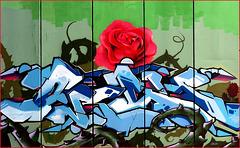 graffiti - (429)