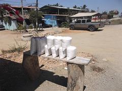 Poudre à vendre / Powder for sale   (Mexique)