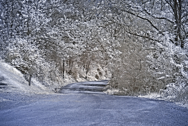 A back road