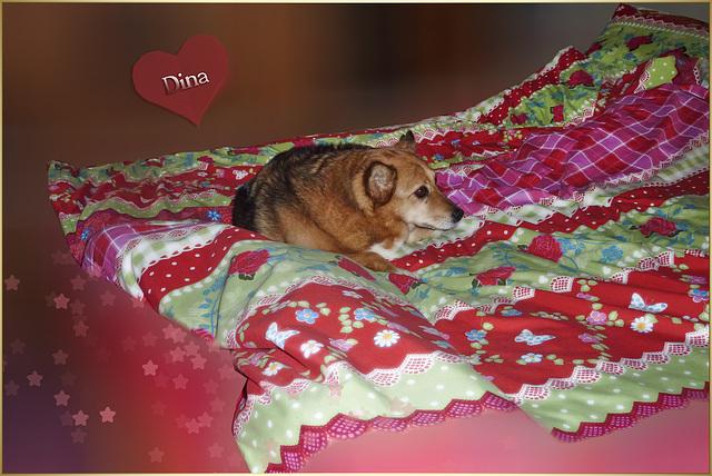 Good night world ღ˚ •。* ♥ ˚ ˚✰˚ ˛★*