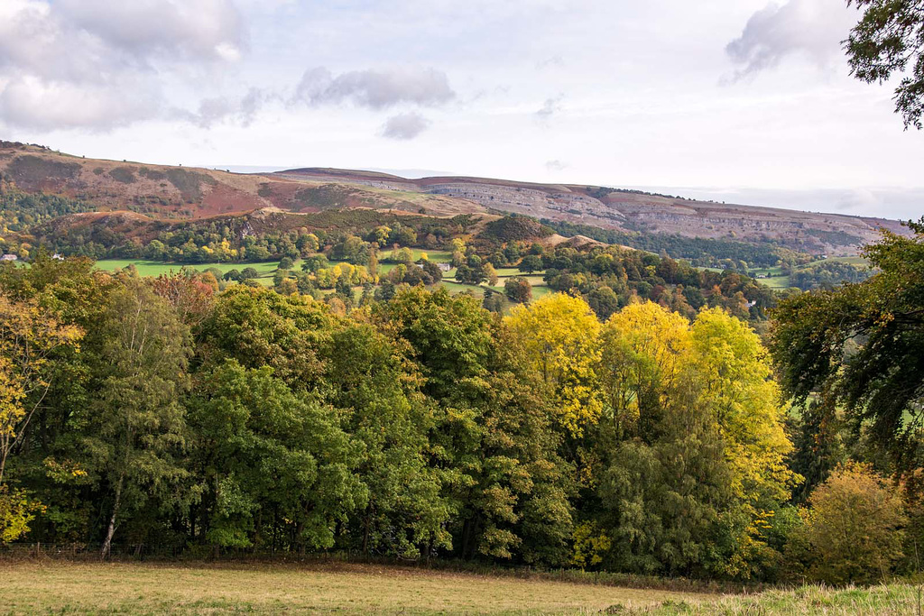 Autumn colours2